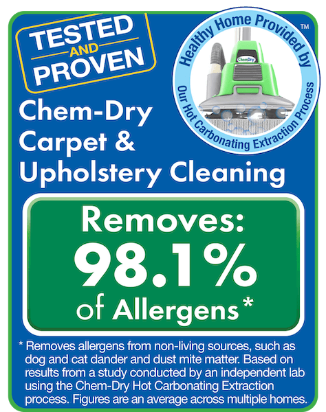 chem dry removers allergen test results