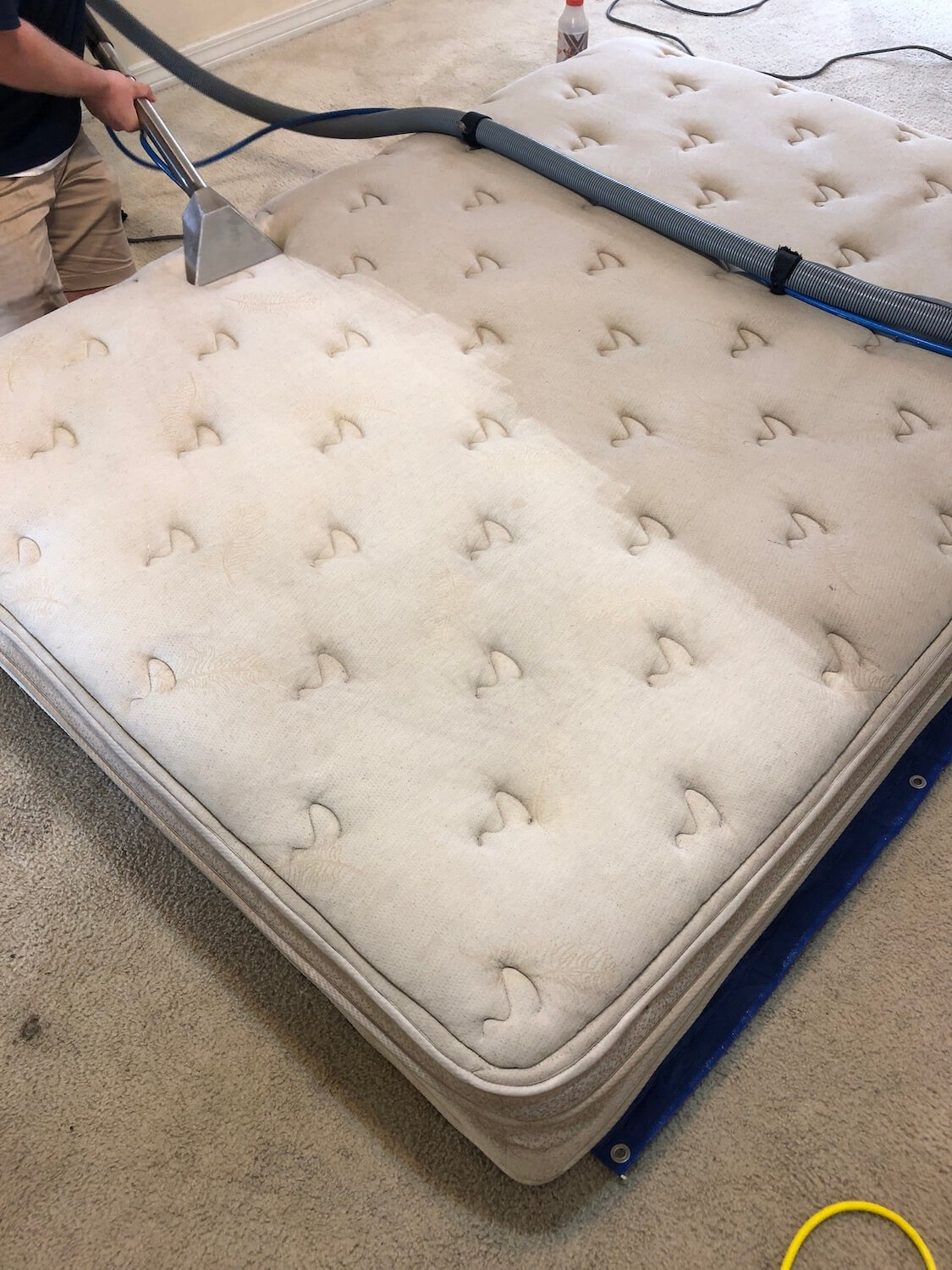 A photo taken during a mattress cleaning